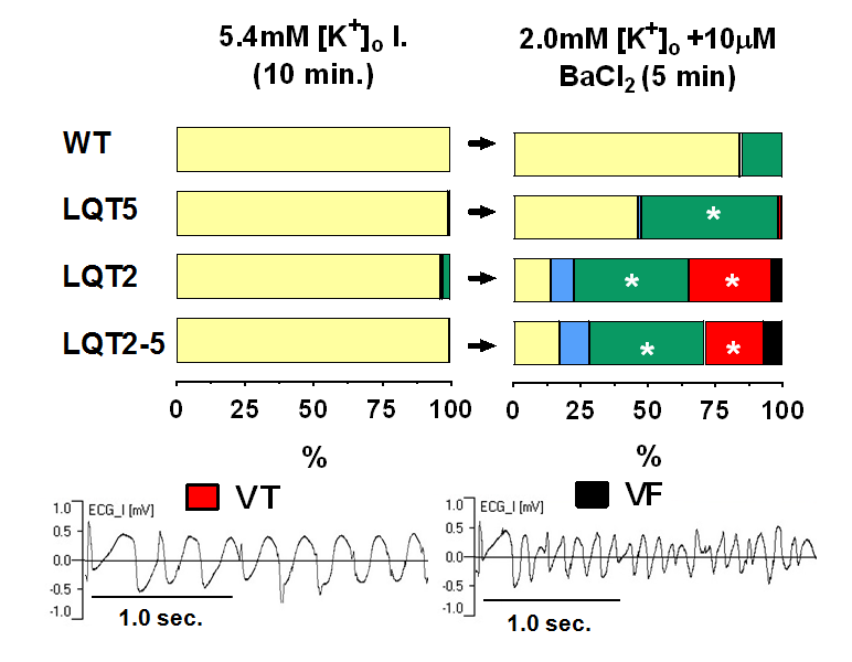 Transgenic LQT2, LQT5 and LQT2-5 rabbit models with decreased repolarization reserve for prediction of drug-induced ventricular arrhythmias