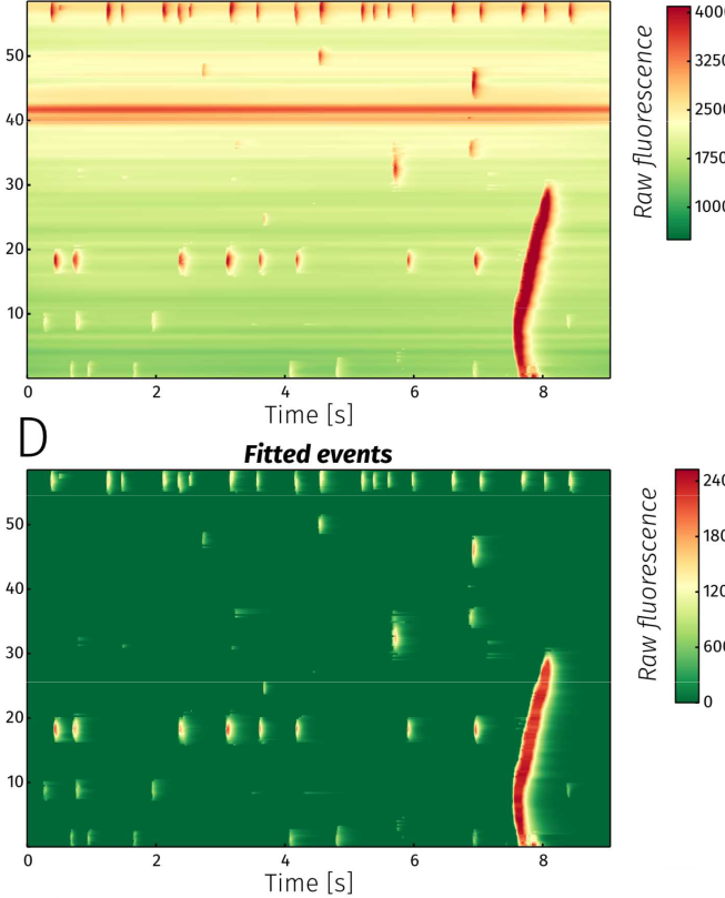 Automatic Detection and Classification of Ca2+ Release Events in Confocal Line- and Frame-scan Images